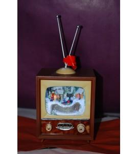 Petite télévision musicale