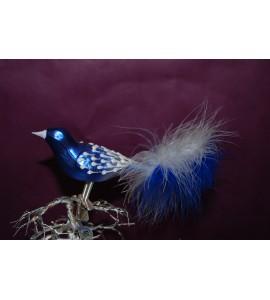 Oiseau bleu et blanc