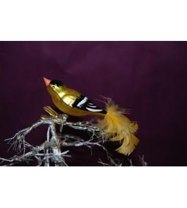 Oiseau jaune et noir