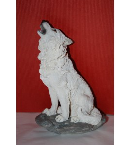 Loup Blanc Assis