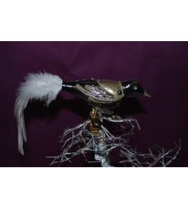 Oiseau noir et doré
