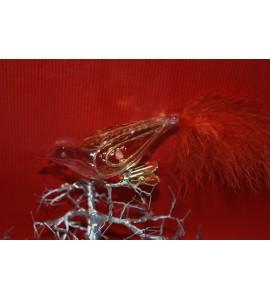 Oiseau Transparent