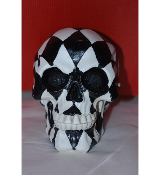 Crâne Arlequin