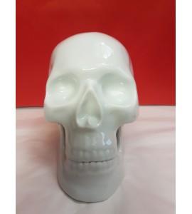 Crâne Blanc en Porcelaine