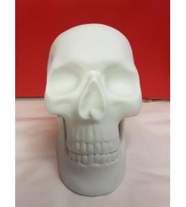 Crâne en Porcelaine Blanc