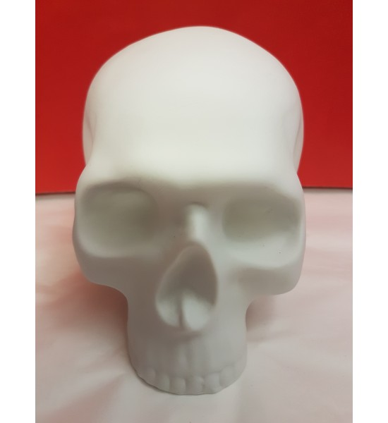 Crâne Vanité