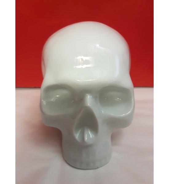 Crâne Vanité Email